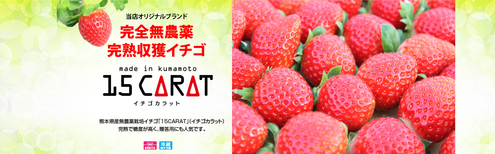 完全無農薬 完熟イチゴ「15CARAT」イチゴカラット 当店でしか手に入りません!